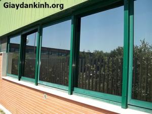 Dán kính chống nắng giải pháp cách nhiệt cho nhà kínhDán kính chống nắng giải pháp cách nhiệt cho nhà kính