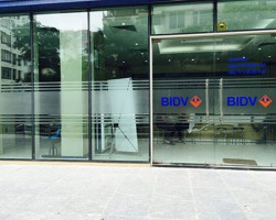 Dán decal kính văn phòng giá rẻ tại Hà Nội
